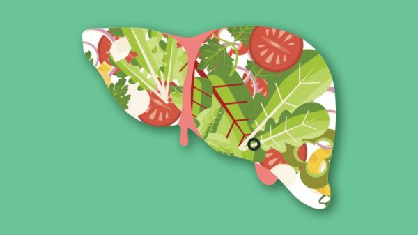 Healthy Functioning of the Liver